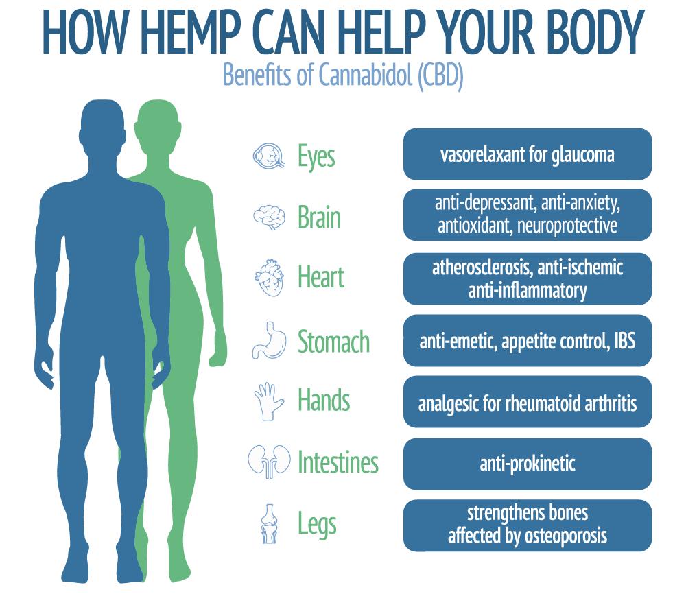 How Hemp Can Help Your Body - Benefits of Cannabidol (CBD)